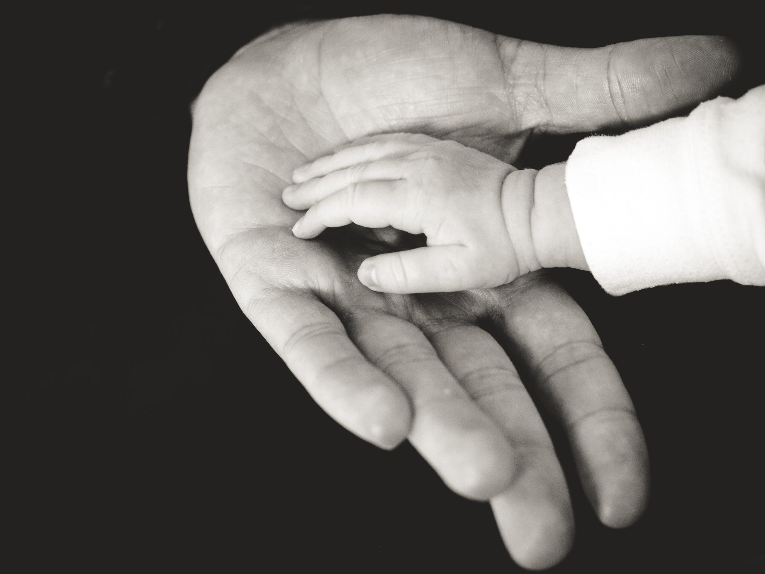 inconsistências, não, Escolher creche escolha creches e jardins de infância as melhores creches em portugalChicco, Espreguiçadeira, carrinho de bebé, roupa bebé, roupa bébé, roupa bebe, licença parental, abono de família, creche, dodot, cadeiras auto, cadeira auto, roupa de bebé, roupas de bebés, berços bebé, licença de maternidade, roupa criança, andarilho bebe, jardim de infância, fraldas, sapatilhas criança, carrinho bebé, carrinho bebe, ténis criança, isofix, biberões, roupas recém nascido, camas bebé, alcofa, loja chicco, loja de bebé, sapatos bebé, cadeiras bebé, berços bebé, nomes de bebé, chicco outlet, chuchas, babygrow, cadeira auto bebé, gymboree, brincar, desenvolvimento infantil, pediatra, pediatras, mãe, pai, parentalidade, empreendedorismo, Decathlon, Benfica, Worten, Continente, Fnac, Pingo Doce, Auchan, Jumbo, Lidl, Decathlon Alfragide, Chicco, Monsanto, Bicicleta, Decathlon Lisboa, Dodot, Parque Infantil, quinta das Conchas, Horário